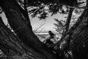 Nature Scenrey Photographs